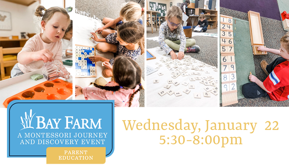 Bay Farm to Host A Montessori Journey and Discovery Event - A Hands-On Experience for Parents