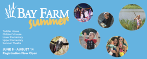 Bay Farm Summer 2020 | Registration Now Open