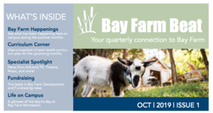 Bay Farm Beat - October 2019