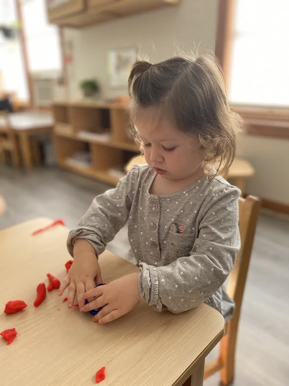Bay Farm Toddler House Montessori